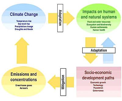 Mitigation and adaption model
